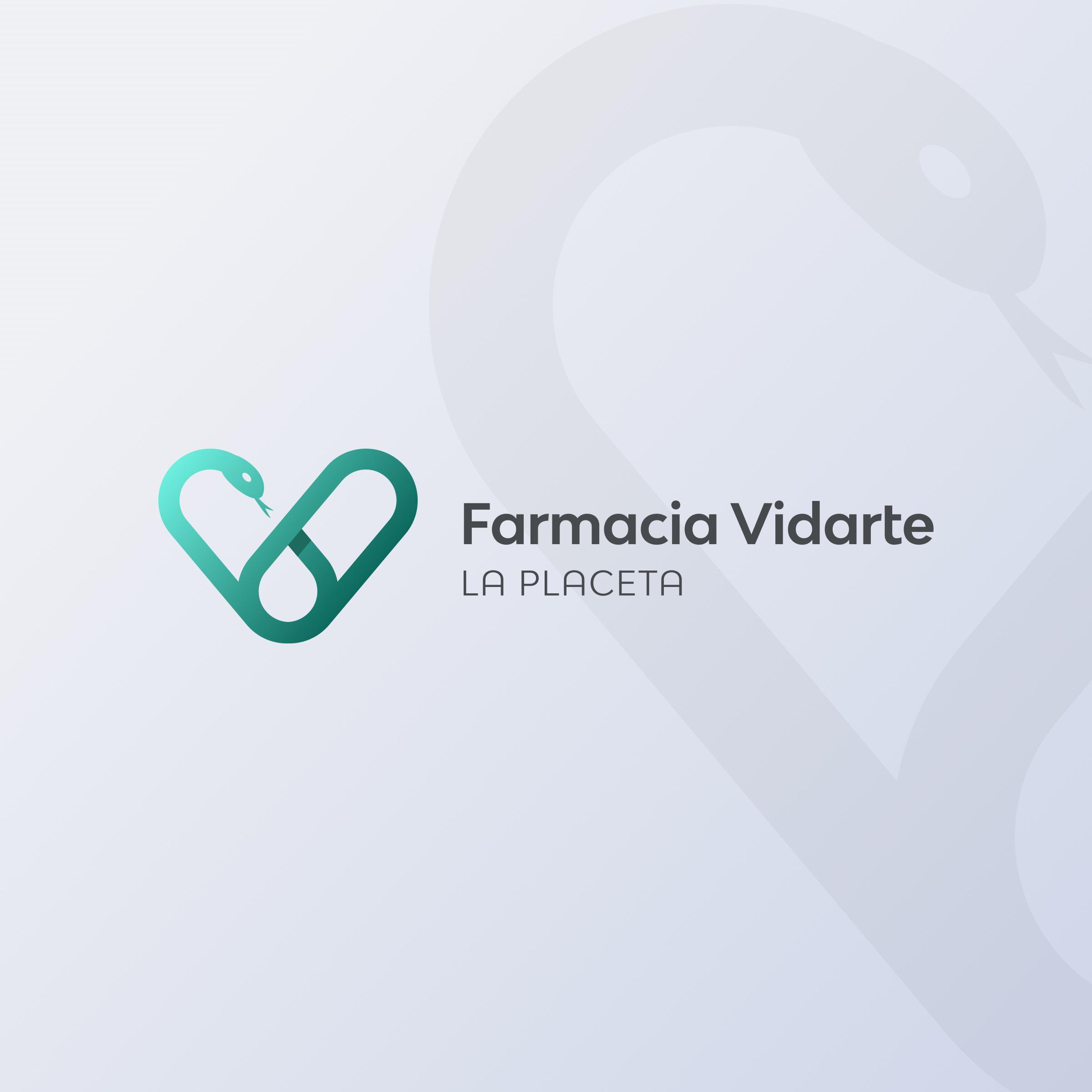 vidarte-logo-wordmark-1x1-2