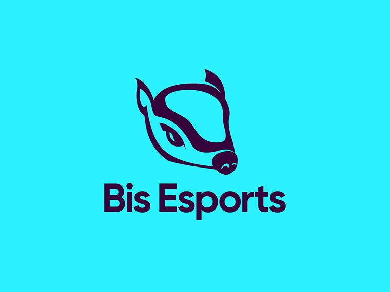 Bis Esports